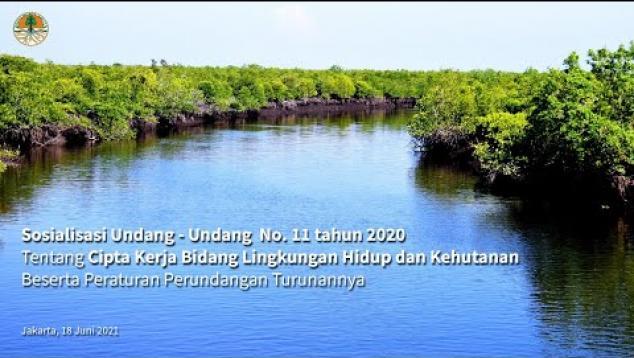Embedded thumbnail for Sosialisasi UU Cipta Kerja bidang Lingkungan Hidup dan Kehutanan #1