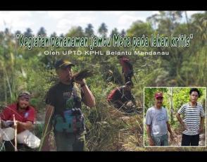 Embedded thumbnail for KPHL Belantu Mendanau Menanam Jambu Mete