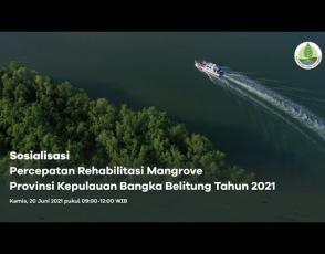 Embedded thumbnail for Sosialisasi Percepatan Rehabilitasi Mangrove Provinsi Kepulauan Bangka Belitung oleh BRGM