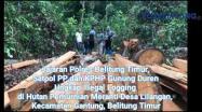 Embedded thumbnail for Pencuri Kayu di Hutan Lindung Ditangkap